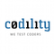 Codility Programming Tests
