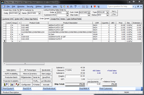 Screenshot of Blue Link ERP (Sales Order - Details)