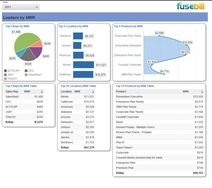 Screenshot #4 of Fusebill  (Fusebill Analytics)