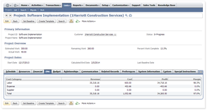 Screenshot #7 of NetSuite (NetSuite Profit and Loss reports)