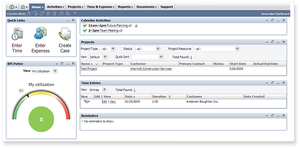 Screenshot #5 of NetSuite (NetSuite projects)